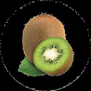 estratto di kiwi